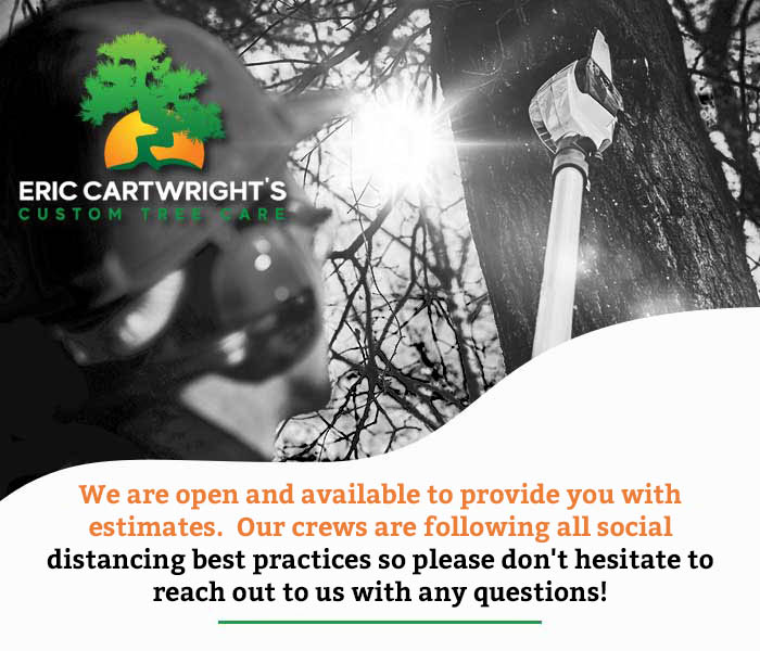 Eric-cartwright-we-are-open
